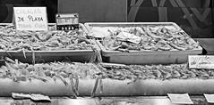 Shellfish - Mercado Central Valencia (BW) 18-55mm F2.8-4 (markdbaynham) Tags: life street camera city urban bw food white black valencia spain fuji x fresh system spanish shellfish seafood fujifilm metropolis local 1855mm trans fujinon compact sensor ciutat xf cigalas 284 xe1 fujix f284
