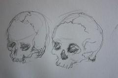 Drawing London on Location@Hunterian Museum (noriko.stardust) Tags: london art museum notebook skull artist drawing diary journal blogger location artists watercolour draw hunterian journalling omy notebookism