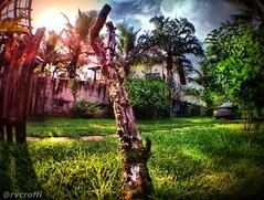 Casa de Praia (rvcroffi) Tags: sunset pordosol sun house sol praia beach grass sunshine garden casa colorful sunny fisheye grama jardim sunrays hdr hdri bertioga entardecer iphone iphoneography olloclip hdriphoneography