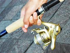 Fishing (- MAGA -) Tags: argentina hand tigre