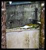 P2231045 (Shirmah) Tags: winter snow car rust wreck töcksfors bilskrot