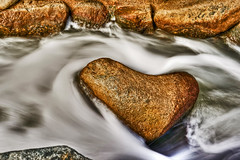 850E5061 - Floating in the love stream (crimsonbelt) Tags: park water flow rocks dubai safa