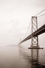 The Bay Bridge. (Socceraholic) Tags: sanfrancisco california ca travel sea usa seascape buildings cities bridges 7d archeticture travelphotography canon7d us2013