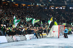 The Swedish bandy final 2013 (Jens Sderblom) Tags: sweden stockholm swedish victory final 94 sverige fans scandinavia champions solna supporters hammarby bajen smguld saik hammarbybandy elitserien bandyfinal d7000 bajenfans supersndag friendsarena