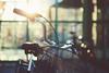 5/100 (jennydasdesign) Tags: bike bicycle backlight 50mm dof basket sweden bokeh grain beautifullight sverige cykel värmland kristinehamn sonydslra300 cantcomeupwithagoodtitle dt50mmf18sam 100bicyclesproject