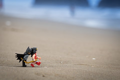 LEGOs at Cannon Beach (David Lim) Tags: lego batman rey star wars r2d2 bb8 c3po beach wonder woman jawa