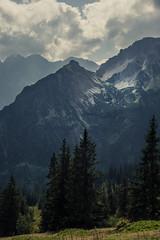 Majestic Alps (Netsrak) Tags: oberstdorf bayern deutschland de kleinwalsertal mountain mountains at austria tree trees baum bume cloud clouds wolke wolken outdoor nature natur landscape landschaft berg berge alpen alps europe europa vorarlberg riezlern mittelberg hirschegg