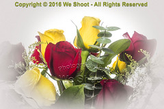Red and Yellow Roses (weeviltwin) Tags: rose roses yellow red bouquet memories memorial bunch vignette weshootcom