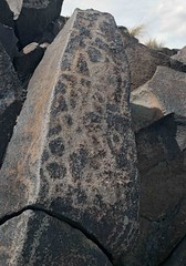 Petroglyphs / Fish Lake Valley Site (Ron Wolf) Tags: anthropology archaeology nativeamerican abstract clusteredpolygons petroglyph polygon rockart nevada blm