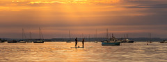 Evening paddle (Phil_J_123) Tags: sunset pjackson paddleboarding sea dorset coastline poole orange harbourviewphotography photography sup still seascape calm coast harbour water