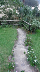Pathway to the beach (Rckr88) Tags: port st johns portstjohns easterncape eastern cape south southafrica africa walk walkway walks pathway path greenery green grass flowers flower plant plants travel outdoors nature