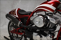 bikes-2009world-114-d-l