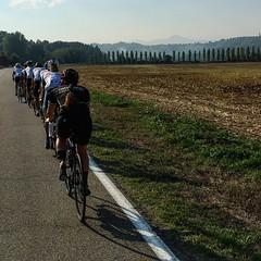 Strive Challenge 2016 - Cycle 1