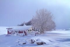 El refugio / The hut (Cruz M. Vicente) Tags: navarra aralar refugio nieve