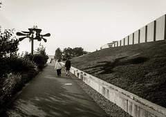 Sculpture Park- Seattle (Bingo3362) Tags: seattle washington vacation andrew joanne sculpture blackandwhite