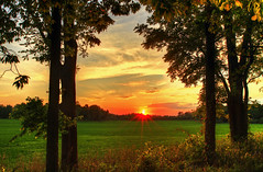 Welcome to Fall (Matt Champlin) Tags: autumn fall beautiful gorgeous sunset colorful country life nature landscape canon 2016 new york upstatenewyork field farm farming rural hedgerow green lush equinox september