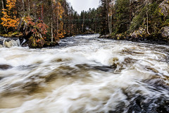 Pieni Karhunkierros (Tuomo Lindfors) Tags: kuusamo suomi finland topazlabs clarity dxo filmpack pienikarhunkierros oulangankansallispuisto oulankanationalpark koski rapids kitkajoki kitkanjoki joki river myllykoski vesi water
