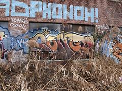 Sonet (carnagenyc) Tags: nyc newyork graffiti inkhead sonet vts phonoh