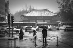 winter scenery (SungsooLee.com) Tags: leica winter people blackandwhite snow blackwhite palace korea apo summicron seoul 90mm asph m9 f20 mydays rememberthatmomentlevel1 rememberthatmomentlevel2 mmonochrom mydaysphototumblrcom