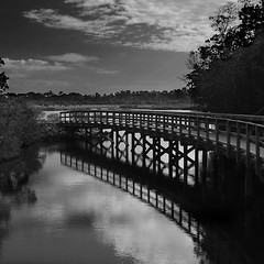 Robinson Preserve (Postcards From The Edge Photography) Tags: wood bridge water clouds florida preserve bradenton robinsonpreserve