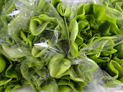 leaf lettuce  on the Union Square (lotos_leo) Tags: food green leaf salad farmers market manhattan midtown lettuce unionsquare