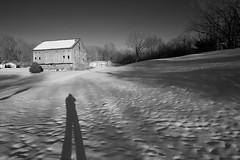 Long fellow... (tbower) Tags: winter shadow bw snow monochrome barn rural geotagged nikon raw nef farm country cs5 d3s nikongp1 niksep nikkor24120f4vr