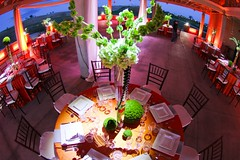 Floral Pinspoting - Amber/Champagne Lighting