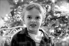 Christmas 37 December 2012 (tiffanylea1) Tags: christmas boy portrait kids blackwhite december child indoors inside wintertime littleboy christmastime 2012 kidsportrait childportrait december2012 christmas2012