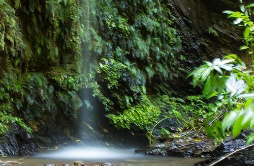 Salto de agua en Parque Ecológico Reussland, cordillera de Nahuelbuta