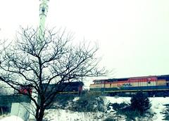 BC Rail in Thornhill, ON (Bayview & Laureleaf overpass) (Jamaalism) Tags: ontario canada cn train rail locomotive thornhill cnrail bcrail 4603