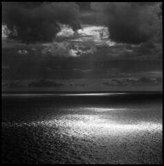 Across the sea (Marcello Pasini) Tags: zeiss kodak tmax hc110 hasselblad 400 paterson gossen 500cm sonnar 1504 selfdevelopment ilfostop ilfordrapidfixer autaut ilfotol lunasix3 epsonv700pro marcellopasini