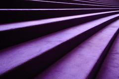 20130210_075.jpg (Rodney Campbell) Tags: building architecture purple steps sydney australia newsouthwales operahouse soh