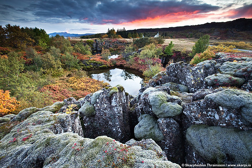 Autumn in Þingvellir National Park, south west Iceland