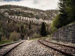 Umbroglio ferroviaiare (Franois-Joseph76) Tags: france montagne rail pont arbre franchecomt voie 2012 ballast chemindefer morez