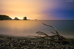 421 Segundos en Silencio (diegogm.es) Tags: arbol mar asturias playa olympus nubes nocturna rama roca cudillero silencio pea omd oceano piedra cantabrico largaexposicion contaminacionluminica em5 gavieru