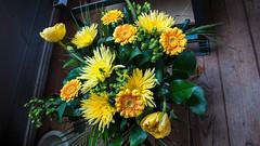 Flowers sent by post (Elise Swart) Tags: flowers france flower frankrijk fr bloemen lafrance bloem boeket bloei moederdag ldf bloeien fleurfleurs