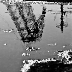 liquid grid (Vasilis Amir) Tags: abstract blur reflection water monochrome square bokeh  mygearandme mygearandmepremium mygearandmebronze vasilisamir