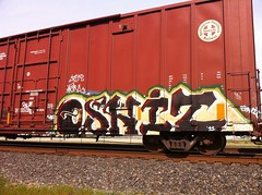 Oshit (TheSmell) Tags: train graffiti tag shit oh boxcar graff freight fr8 oshit
