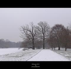 wintry landscape (JoannaRB2009) Tags: park city trees winter snow nature germany dark landscape deutschland hessen kassel hesse karlsaue