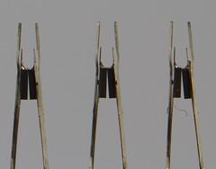 macro closeup march head bellows lighttent sata hitachi ermelo deskstar harddiskdrive 2013 torenlaan canoneos7d readwriteheads pallas135mmf28 flextensiontubes s40j102 hds722525vlsa80