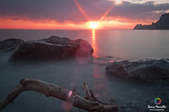 Sun (Dario Moriella) Tags: sunset sea sun tree beach water stone skyline lights nikon long exposure mare stones esposizione scogli nikkon sunsetsea 2470 filtri d700