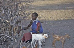 Tanzanie (Micheline Canal) Tags: afriquedelest ethnie masaïs tanzanie afrique oiseau personne visage sunrise
