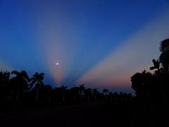 Moon sinking at sunrise 20160819 (Kenneth Cole Schneider) Tags: florida miramar westbrowardwca