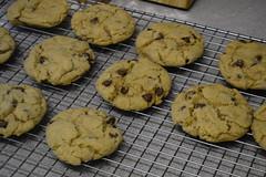 Chocolate Chip Cookies (Vegan) (Vegan Butterfly) Tags: vegetarian vegan food yummy tasty delicious dessert snack treat baking baked cookies chocolate chip nondairy