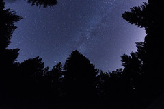 Camp Loma Stars (seamusruizearle) Tags: astrophotography astrology star startrails stars milkyway night