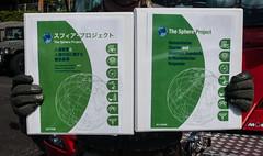 ogura yukaの壁紙プレビュー