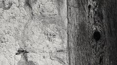 Face to face 20160916 (SagaLun) Tags: facetoface texture roughtouch woodface knotsandcracks roughwall