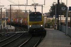 HLE 1342 richting Denderleeuw (TrainzDr3ver) Tags: train belgium belgique belgi zug cargo alstom trein belgien freighttrain nmbs sncb brusselgent goederentrein hle13 spoorlijn50