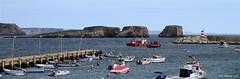 El Algarve - Segres (Juan Carlos Maguregi) Tags: portugal cabosanvicente elalgarve