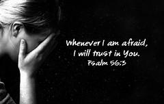 Psalm 56:3 (tcjakob) Tags: trust afraid psalm psalm56